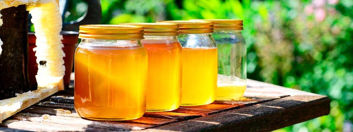 ¿Qué es la miel pura de calidad?