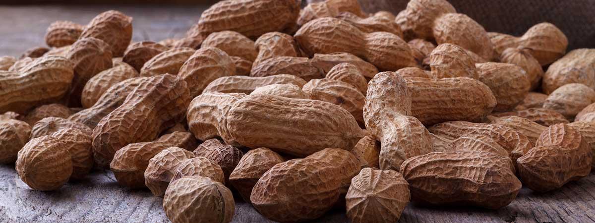 Cacahuetes - Frutos secos ricos en proteínas