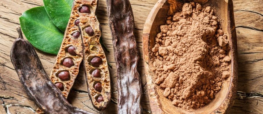 la-algarroba-el-alimento-sin-grasa-que-compite-con-el-cacao